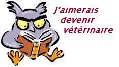 """Imagen de """"recursostic.educacion.es"""""""